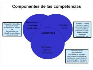 componentes competencias