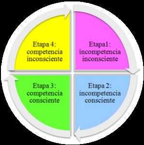 fases aprendizaje